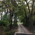road leading to 3002 Azle
